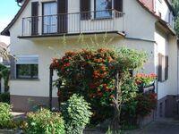 Ferienhaus Kaffenberger in Michelstadt - kleines Detailbild