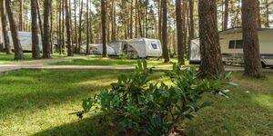 Urlaub im Wohnwagen - mitten im Wald, Wohnwagen 03 in Lütow - Usedom - kleines Detailbild