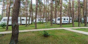 Urlaub im Wohnwagen - mitten im Wald, Wohnwagen 11 in Lütow - Usedom - kleines Detailbild