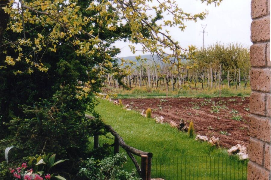 Obst-und Weingarten am Haus