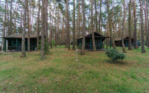 Urlaub im Bungalow - mitten im Wald, Bungalow Nr. 20