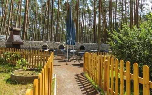 Urlaub im Bungalow - mitten im Wald, Bungalow Nr. 17