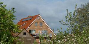 Obsthof Schröder - Ferienwohnung 2 Südterrasse in Drochtersen - kleines Detailbild