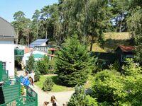 Ferienpark Waldperle, 3-R-FeWoTI in Trassenheide (Ostseebad) - kleines Detailbild