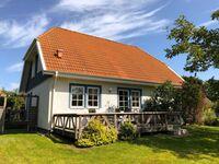 Elkes Ferienhaus in Wustrow (Ostseebad) - kleines Detailbild