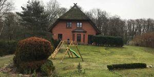FW Zeplin in Ahrenshoop (Ostseebad) - kleines Detailbild