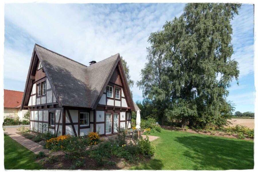 Reetdachhaus Flieder