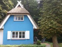 Puppenhaus in Ahrenshoop (Ostseebad) - kleines Detailbild