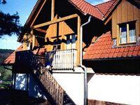 Daumsmühle, Wiesengrund in Mossautal-Unter-Mossau - kleines Detailbild