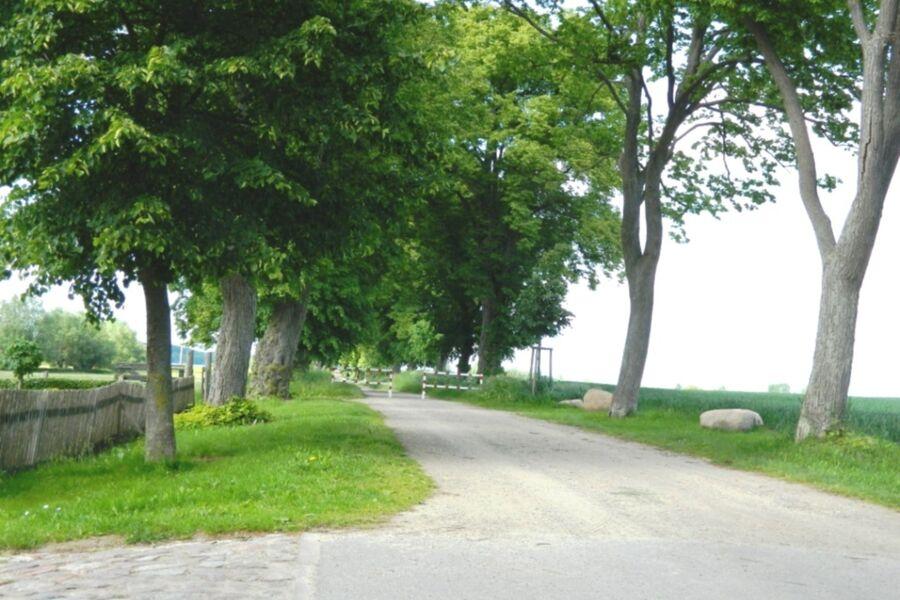 Pension Müritzwiese, *Ferienwohnung 2