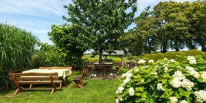 Pension Müritzwiese, *Ferienwohnung 6 in Gotthun - kleines Detailbild