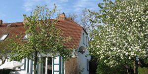 Altes Haus der Seefahrtsschule Grünbaum in Wustrow (Ostseebad) - kleines Detailbild