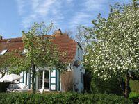 Grünbaum - FH Wustrow in Wustrow (Ostseebad) - kleines Detailbild