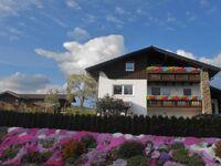 Ferienwohnung 'Sonnenblick' - Sonnenterrasse in Böbrach - kleines Detailbild