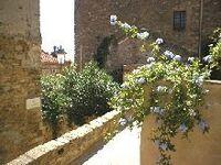 Centro Storico in Campiglia Marittima - kleines Detailbild