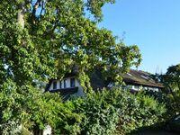 Reethäuser 17 - Fam. Kröning - TZR, 17 b Kirchhaus in Groß - Zicker - kleines Detailbild