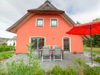 Reetdachhaus Seeblick, Reetdachhaus mit Sauna und Kamin in Stubbenfelde - kleines Detailbild