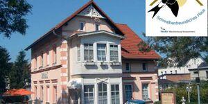 Pension 'Villa Erika', rollstuhlgerechte Ferienwohnung EG in Lubmin (Seebad) - kleines Detailbild