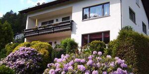 BE-Ferienwohnung Patry, Ferienwohnung Patry 64m² in Beerfelden-Falken-Gesäß - kleines Detailbild
