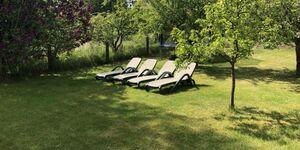 Urlaub am Carwitzer See, Ferienwohnung 'Gänseblümchen' in Feldberger Seenlandschaft OT Carwitz - kleines Detailbild
