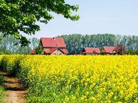 Familien- Ferienhof*** Ostseeland Rerik, FZ09 - Ferienzimmer (24m²; 2 Pers.) Terrasse, ohne Küche in Rerik (Ostseebad) - kleines Detailbild