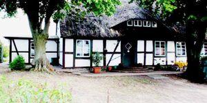 Landhaus Damerow 3, Ferienwohnung Landhaus Damerow 3 in Federow - kleines Detailbild