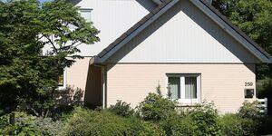 Haus 259 in Michelstadt - kleines Detailbild