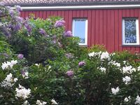 Villa Weltenbummler in Bad Sachsa - kleines Detailbild