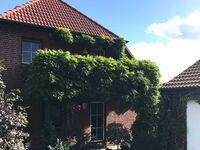 Ferienwohnungen Glöckner, Ferienwohnung Sonnenblume in Zinnowitz (Seebad) - kleines Detailbild