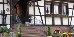 Lauerbacher Hof, Wohnung 1 in Erbach im Odenwald-Lauerbach - kleines Detailbild