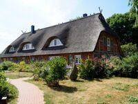 Reethaus Mertinat for six in Insel Poel (Ostseebad), OT Hinter Wangern - kleines Detailbild