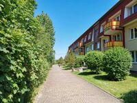 Dünengarten Wohnung 04 in Kühlungsborn (Ostseebad) - kleines Detailbild
