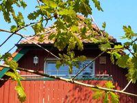 Am Bernsteinweg in Prerow (Ostseebad) - kleines Detailbild