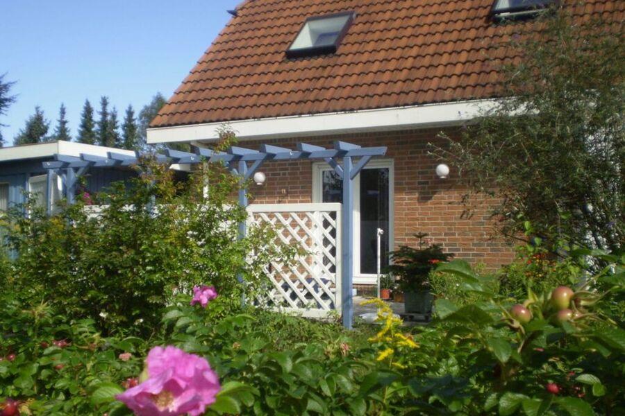Ferienhaus An der Wingst - Terrasse