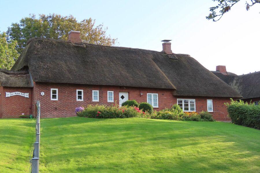 Unser Ferienhaus, mit neuem Reetdach