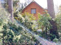 Ferienwohnungen Dierhagen MOST 1110, MOST 1111 in Dierhagen (Ostseebad) - kleines Detailbild