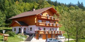 Familie Steinbrecher, Kleine Ferienwohnung 2-3 in Bad Mitterndorf - kleines Detailbild
