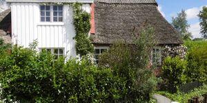 Das kleine Deichhaus in Drochtersen-Dornbusch - kleines Detailbild