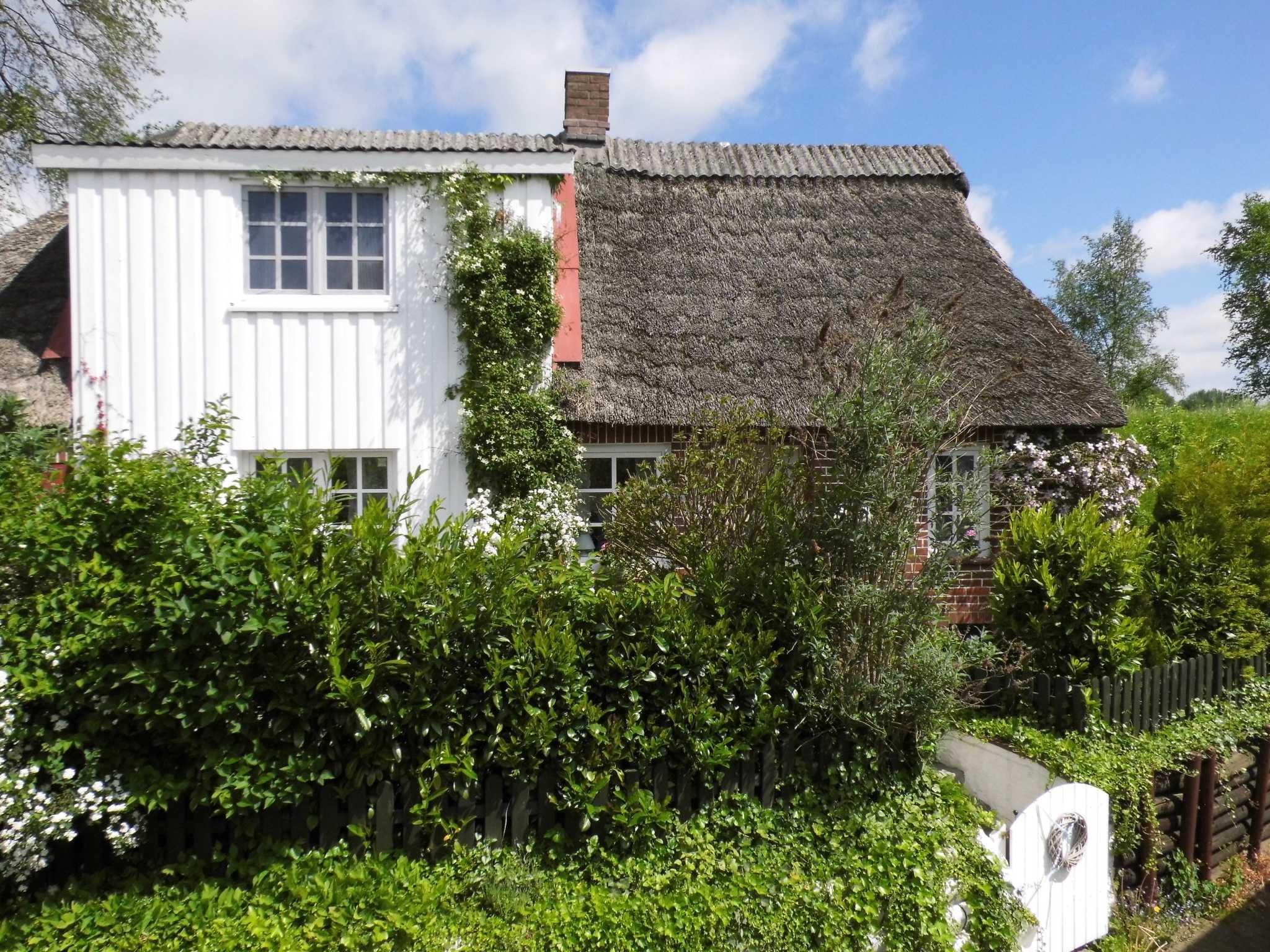 Das Kleine Deichhaus Ferienhaus In Drochtersen Dornbusch (Drochtersen)  Obj Nr.60505
