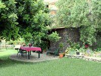 Finca Alcalá, Almendra in El Paraiso - kleines Detailbild