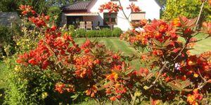 Ferienhaus To Hus   WE143, Fewo 4 in Ramitz auf Rügen - kleines Detailbild