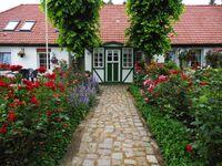 Urlaub auf dem Bauernhof, Fewo 2 in Usedom - kleines Detailbild