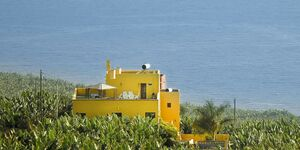 Finca La Cruz, Ferienwohnung Loros in Villa de Tazacorte - kleines Detailbild