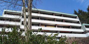 Appartement Harzblick in Sankt Andreasberg - kleines Detailbild