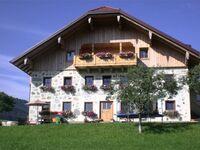 Ferienhof Mayrhofer, Ferienwohnung Wiesengrün in Innerschwand am Mondsee - kleines Detailbild