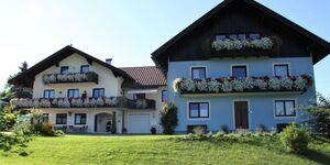 Pension Herned **, Ferienwohnung 3 in Mondsee am Mondsee - kleines Detailbild