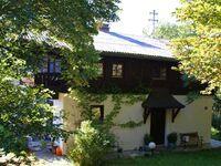 Landhaus Riess, Landhaus Riess - Irrseeblick in Zell am Moos am Irrsee - kleines Detailbild