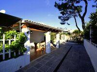 44236 Modernes Strandhaus Es Baladre in Alcudia - kleines Detailbild