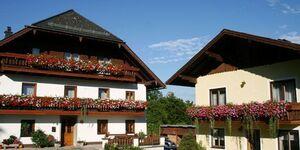 Andrea und Johannes Lindenbauer - Pension, Ferienwohnung 3 in Steinbach am Attersee - kleines Detailbild