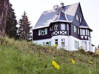 Ahornallee, Waldfrieden in Altenberg OT Oberbärenburg - kleines Detailbild